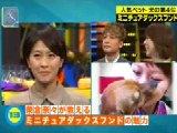 SmaSTATION(スマステーション)無料動画〜癒される!最新人気ペットランキングを大発表!〜111029