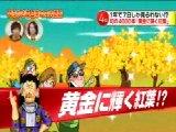 ありえへん∞世界 無料動画〜秋しか見れない黄金に輝く紅葉 ほか〜111122